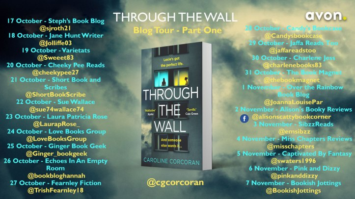 Through-the-Wall-blog-tour-banner